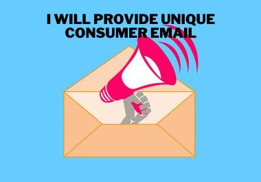I Will Provide 1K Unique Consumer Email List