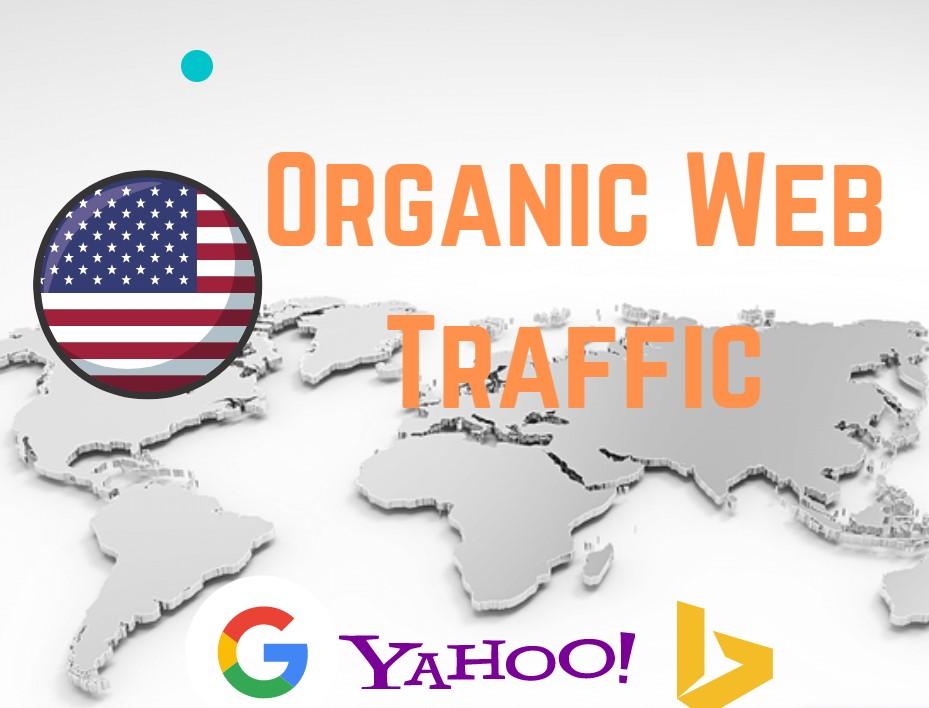 Niche Targeted Organic and Unlimited original USA web traffic