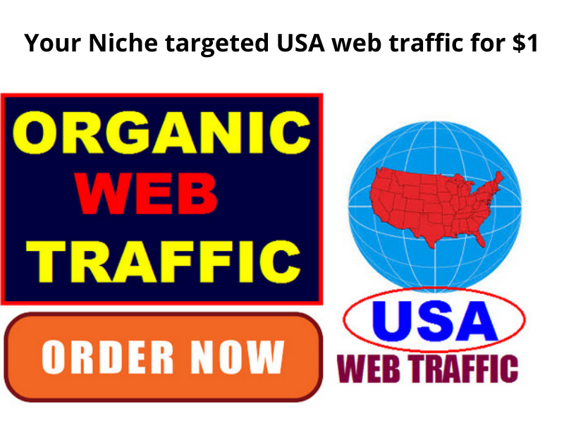 Your Niche targeted USA based web traffic
