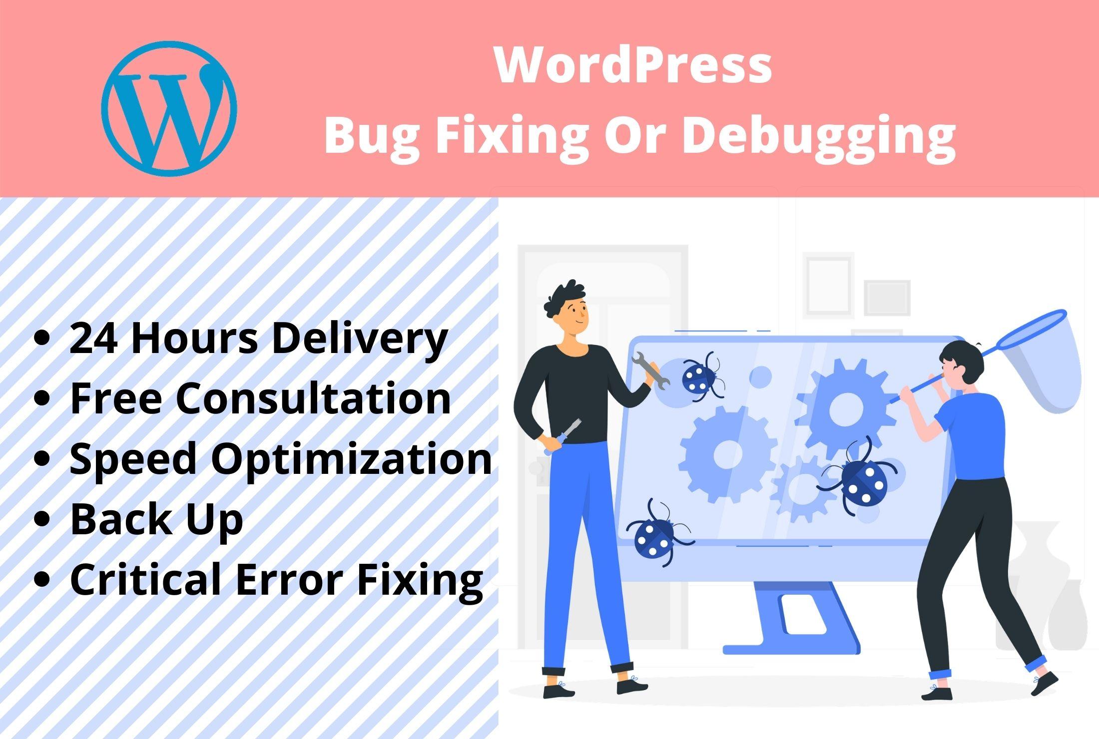 I will fix or debug 1 WordPress website issue,  critical error quickly