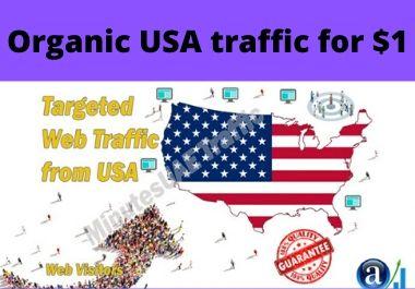 Niche organic USA targeted web traffic