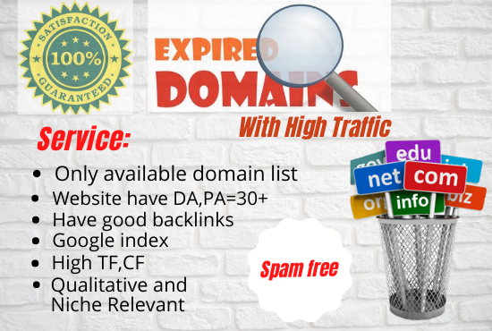 I will find & research 1 niche relevant Expired Domain
