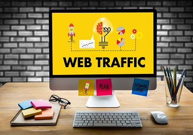 I will bring real Niche targeted USA web traffic to your site