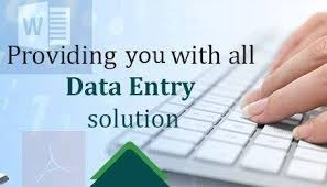 I will be do data entry,  data mining,  copy paste,  web research for you