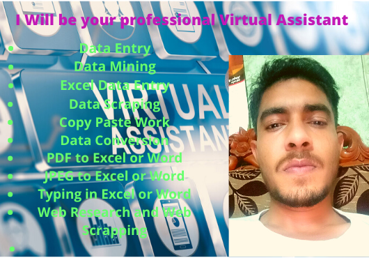 I will be your Best and Professional Virtual Assistant