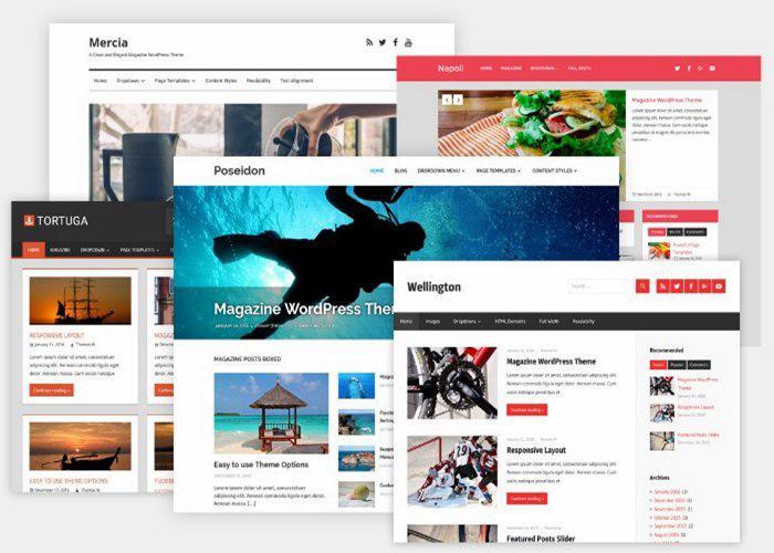 I will Create a Professional & Responsive WordPress Website