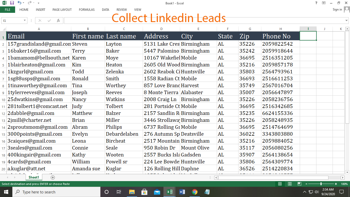 Collect niche targeted email list, bulk email collection, and lead generation