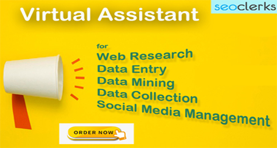 I will be your Virtual Assistant for Data Entry,  Data Mining and Web Research