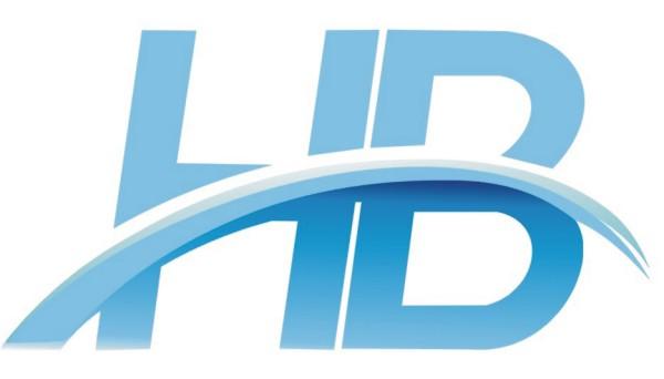 I Will Design Unique & Professional Logo