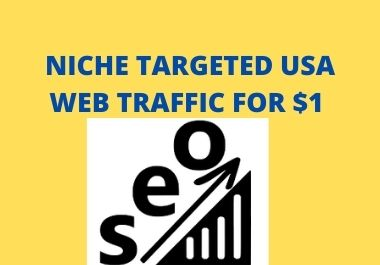 Niche Targeted USA Web Traffic for grow your business