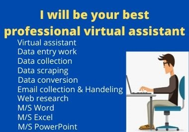 i will be your best professional virtual assistant for Data entry and admin support
