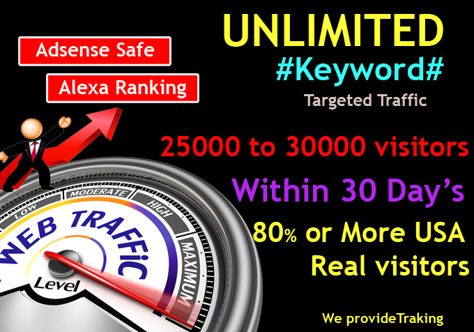 UNLIMITED Human Web Traffic,  Real Organic Google Twitter ect. Traffic