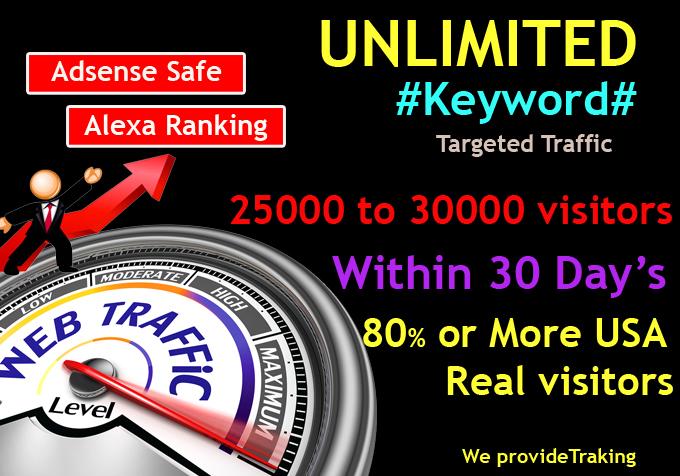 UNLIMITED Human Web Traffic, Real Organic Google Twitter ect.. Traffic