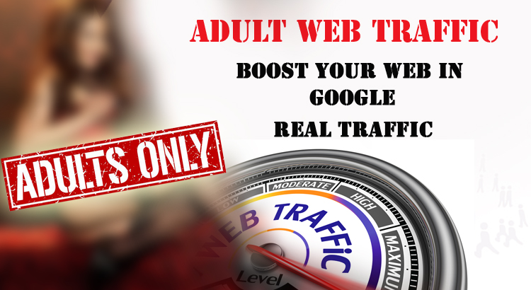 I will provide 30,000 + adult human visitors,  traffic any kind of website