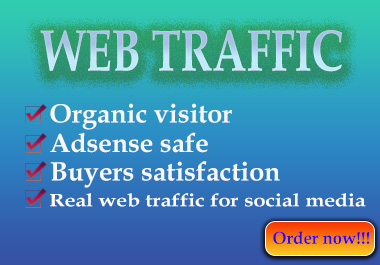 I will Provide targeted web traffic from social media