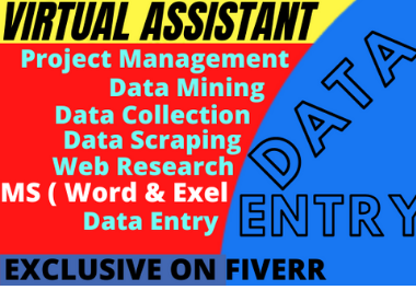 I will do your virtual assistant for data entry and web research