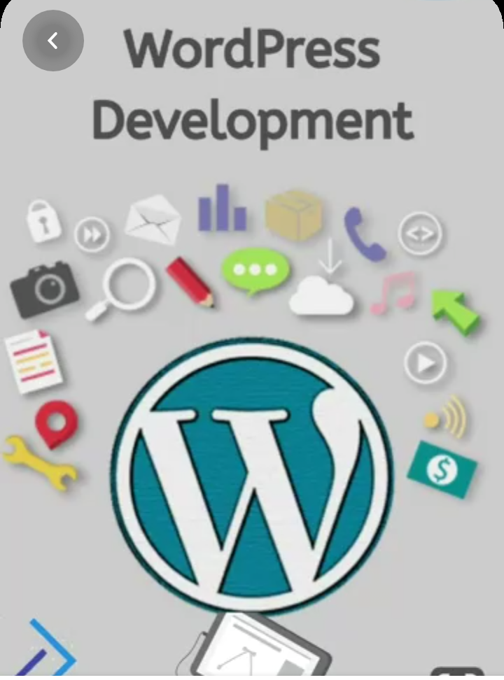 I can develop a WordPress website within 7 days.