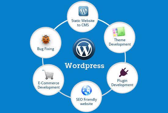 Wordpress developing and customization
