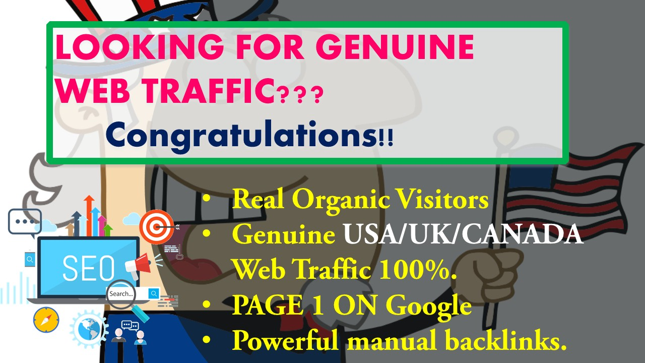 I will drive Genuine USA based web Trafic.