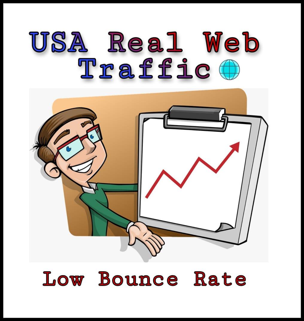 I will drive keyword targeted USA web traffic,  organic visitors