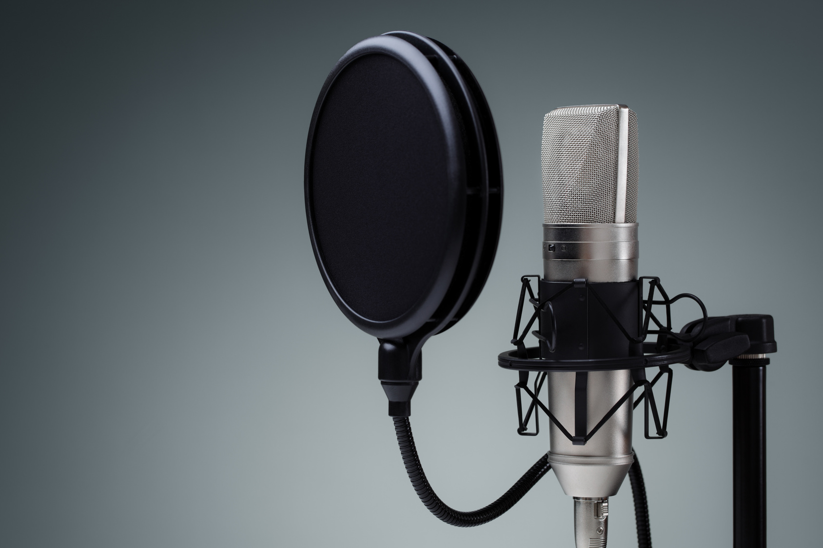 I will do Urdu and Hindi female voice over