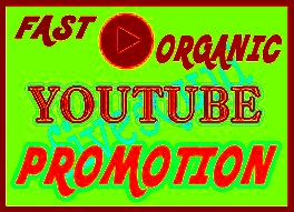 Real and Active Organic Youtube Video Promotion