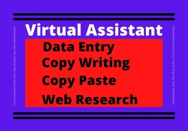 I will be a virtual assistant for data entry,  copy writing,  copy paste,  web research