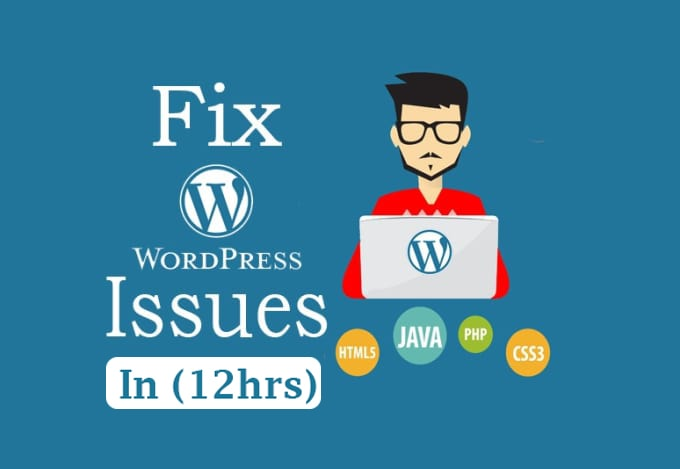 I will do maintenance, updates,  fixes to wordpress in 12 hours