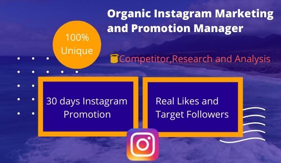I will do organic Instagram marketing with real and naturally growth