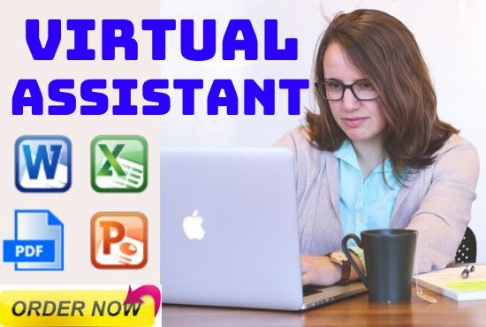 virtual assistant for data entry data mining ms office and excel work