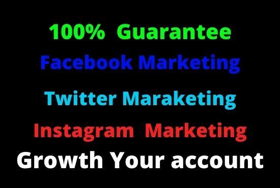I will do facebook marketing Instagram marketing Twitter marketing social media marketing