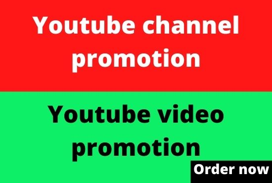 I will boost your video and promote your youtube chanel from social media