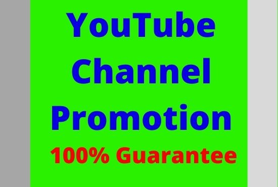 I will guarantee Youtube channeI promotion
