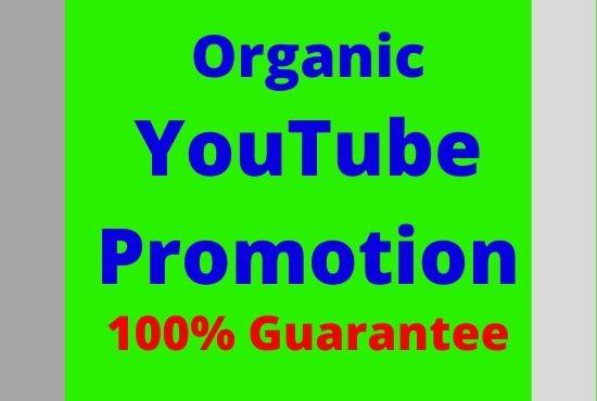 I will guarantee Youtube promotion