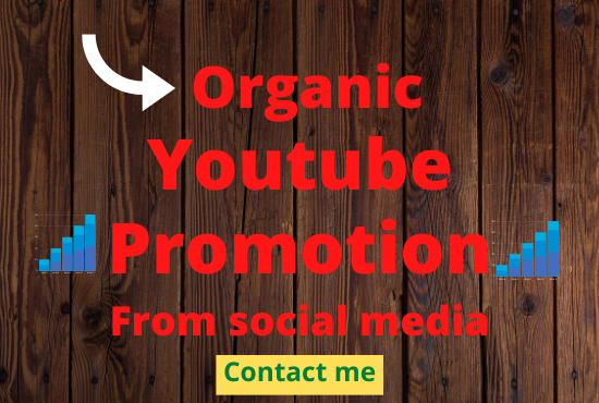 I am an expert on youtube video promotion