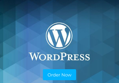 Create A Professional And High Quality Wordpress Website