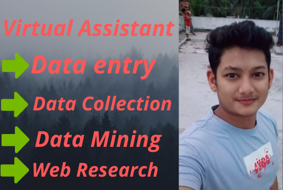 I will be your virtual assistant for web research & data entry