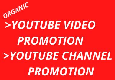 I will do organic YouTube promotion,  youtube marketing,  video marketing using social media platform