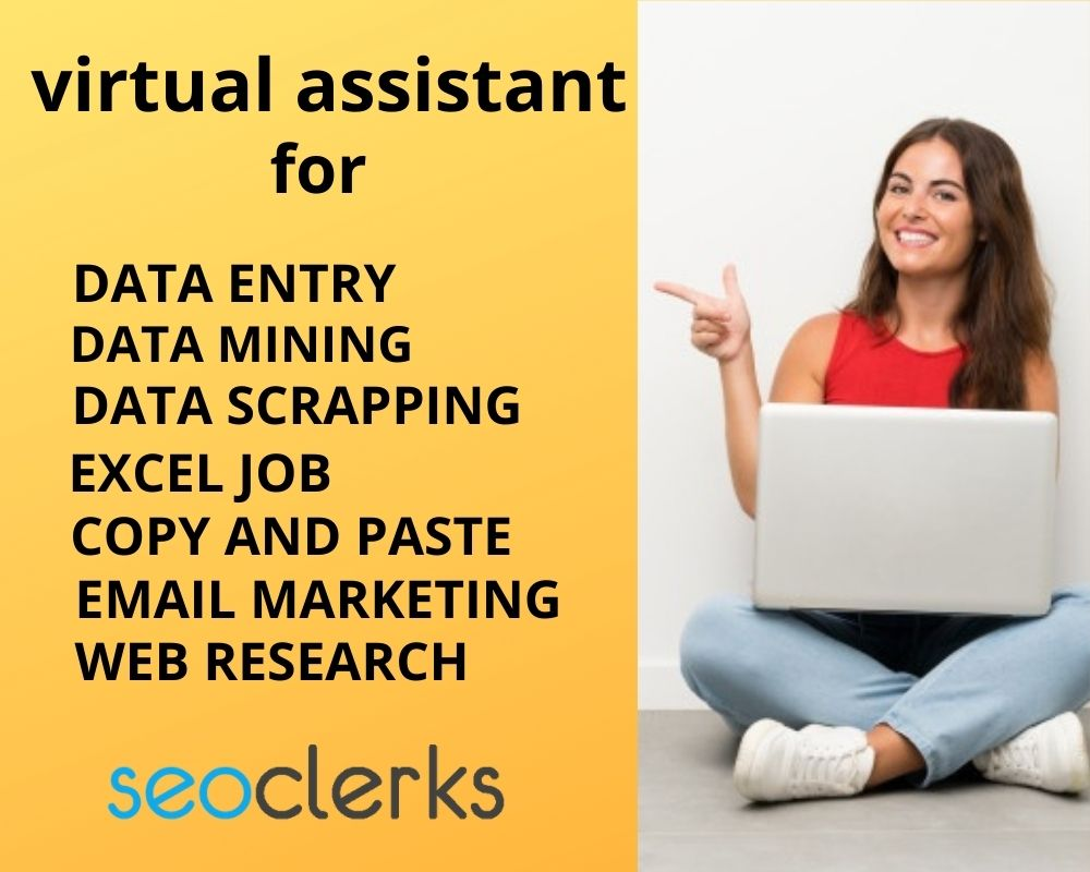 I will be your virtual assistant for web research and data entry