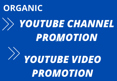 I will do professionally organic youtube video promotion through social media