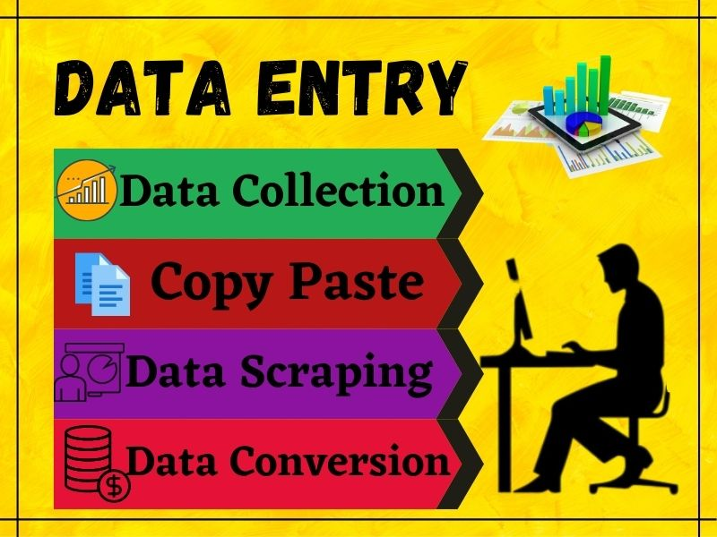 I will do any kind of data entry work for you