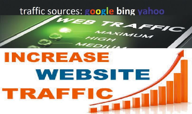 1 Million REAL Human WEBSITE TRAFFIC to targeted website