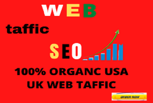 I will send organic targeted web traffic