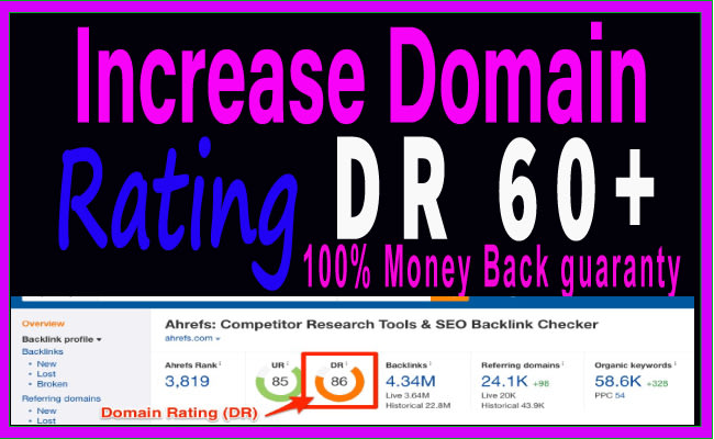 I will increase domain rating DR ahrefs 0 to 50 plus