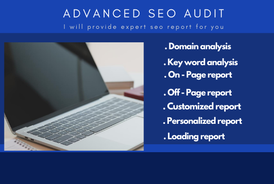 I will provide a professional SEO audit report and a competitive website analysis