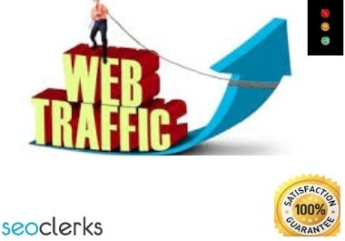 Unlimited and genuine website TRAFFIC for 1 months