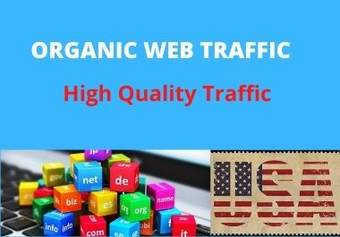 I will drive niche targeted USA traffic