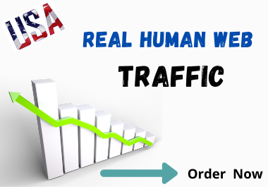 I will drive niche targeted USA web traffic