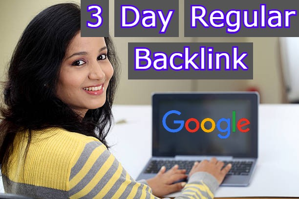 I will Do 3 Day Regular SEO Backlink Ranking Your Website