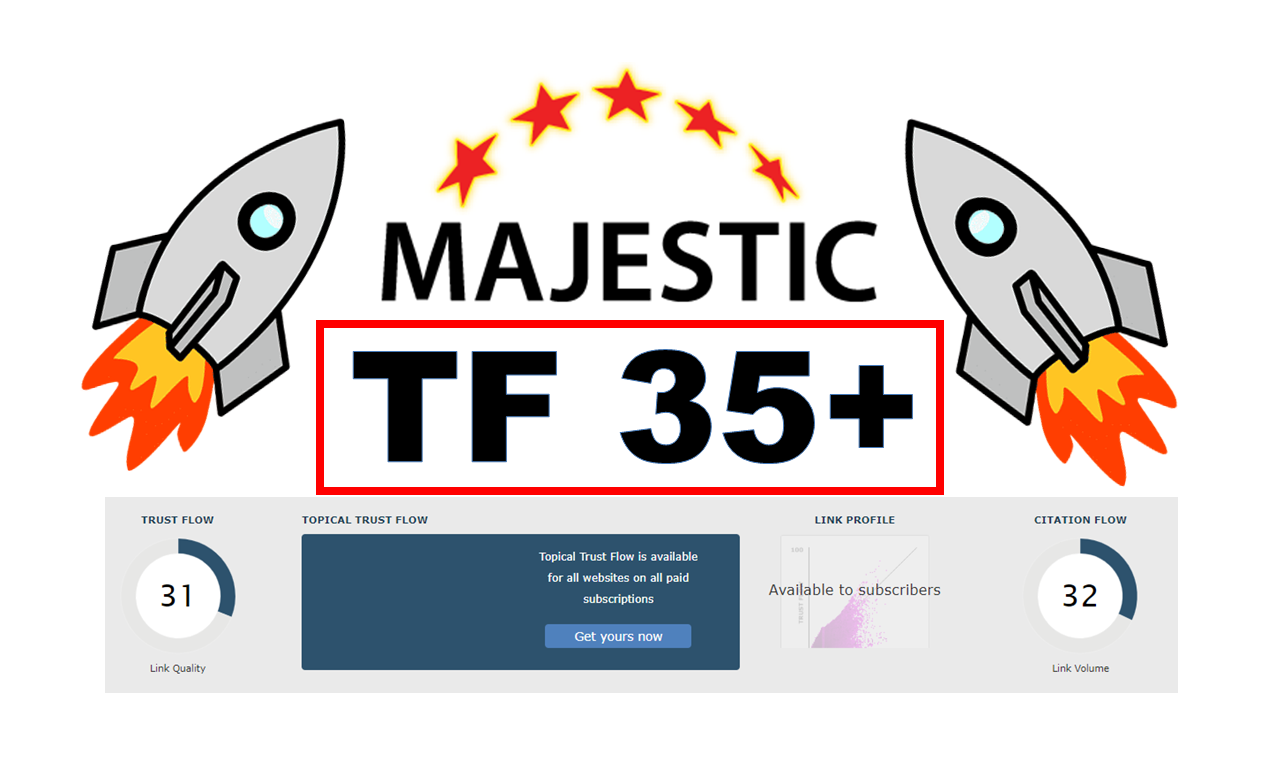 I will increase majestic trust flow upto 30 with SEO backlinks